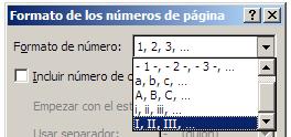 formato del número de página